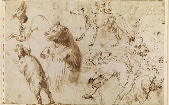 Drawings By Michelangelo